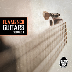 Flamenco Guitars Vol 4