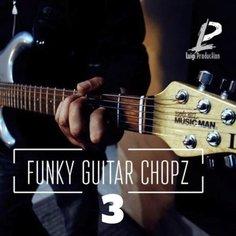 Funky Guitar Chopz 3