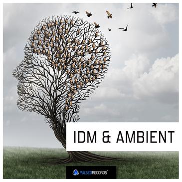 IDM & Ambient