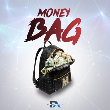 Phyness Audio Money Bag