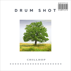 Drum Shot: Chillhop