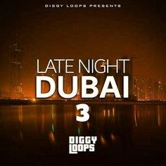 Late Night Dubai 3