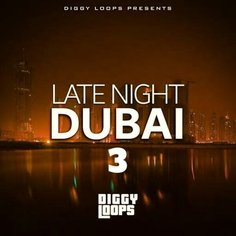 Late Night Dubai 3
