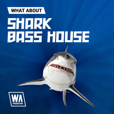 What About: Shark Bass House