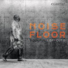Noise Floor
