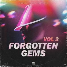 Forgotten Gems Vol 2