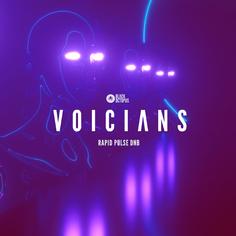 Voicians - Rapid Pulse DnB