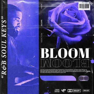 BLOOM: R&B Soul Keys