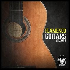 Flamenco Guitars Vol 5