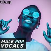Male Pop Vocals