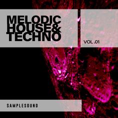 Melodic House & Techno 01