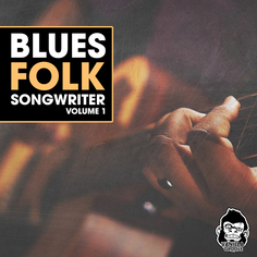Blues Folk Songwriter Vol 1