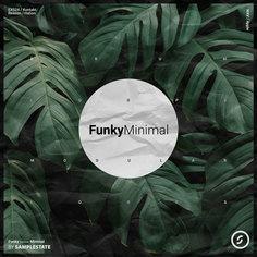 Funky Minimal