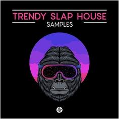 Trendy Slap House