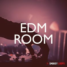 Smokey Loops: EDM Room