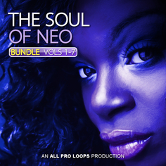The Soul Of Neo Bundle