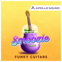 Smoozie Funky Guitars