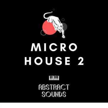 Abstract Sounds: Micro House 2