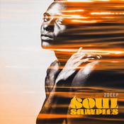 Soul Samples