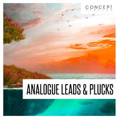 Analogue Leads & Plucks