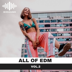 All of EDM Vol.2