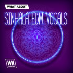 What About: Sinhala EDM Vocals