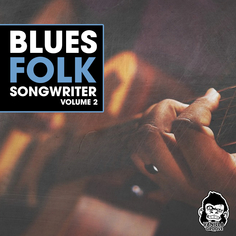 Blues Folk Songwriter Vol 2