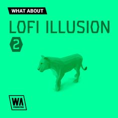 What About: LoFi Illusion 2