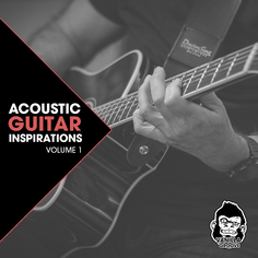 Acoustic Guitar Inspirations Vol 1