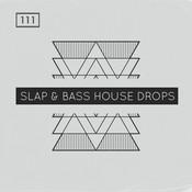 Slap & Bass House Drops