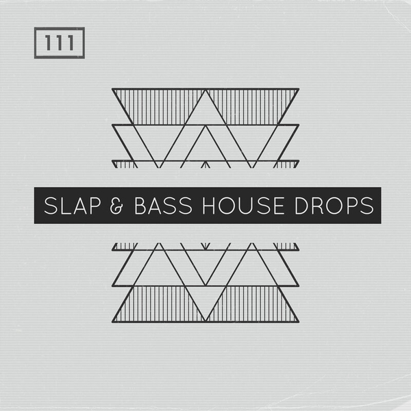 Slap & Bass House Drops