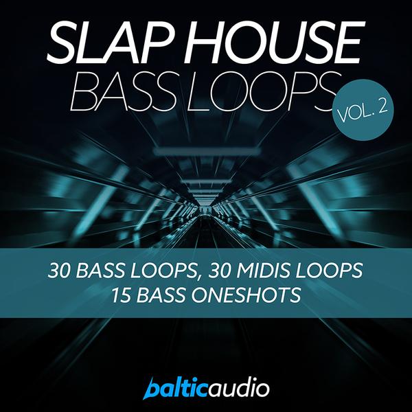 Slap House Bass Loops Vol 2