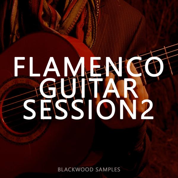 Blackwood Samples: Flamenco Guitar Session 2