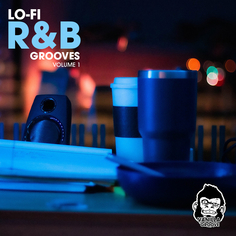 Lo-Fi R&B Grooves Vol 1