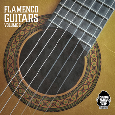 Flamenco Guitars Vol 6