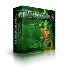Rida Strings: Electric Guitar Loops