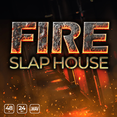 Fire Slap House