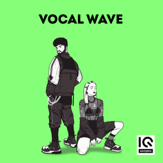 IQ Samples: Vocal Wave