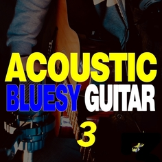 Acoustic Bluesy Guitar 3