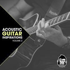 Acoustic Guitar Inspirations Vol 2