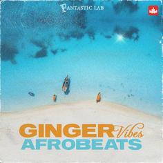 Ginger Vibes - Afrobeats