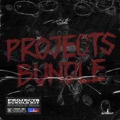 Projects Bundle