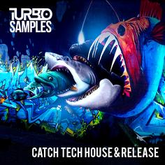 Catch Tech House & Release
