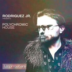 Rodriguez Jr.: Polychromic House