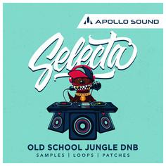 Selecta Old School Jungle DnB