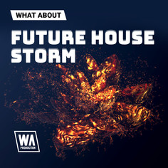 What About: Future House Storm