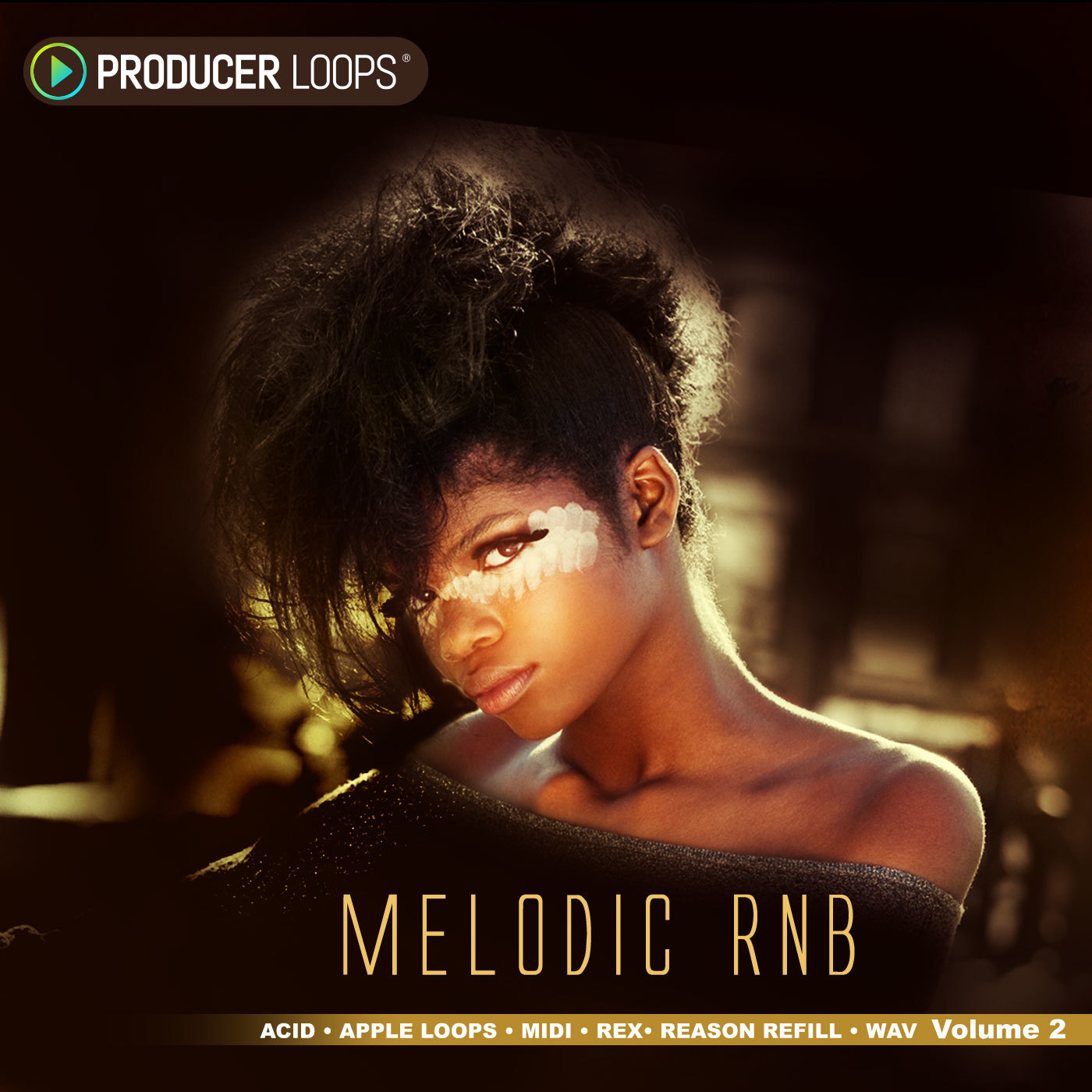 Download producer loops melodic rnb vol 2 for Classic house vocal samples