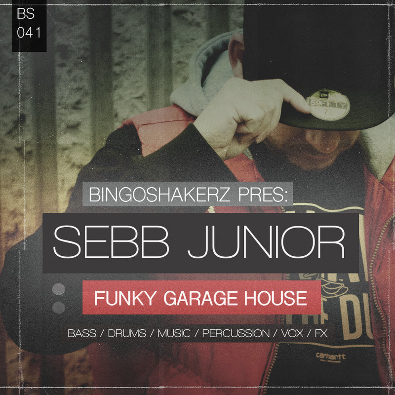 Bingoshakerz sebb junior funky garage house producer loops for Future garage sample pack