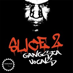 DJ Sykopath Slice Vol 2: Gangsta Vocals