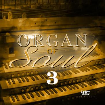 Organ Of Soul 3